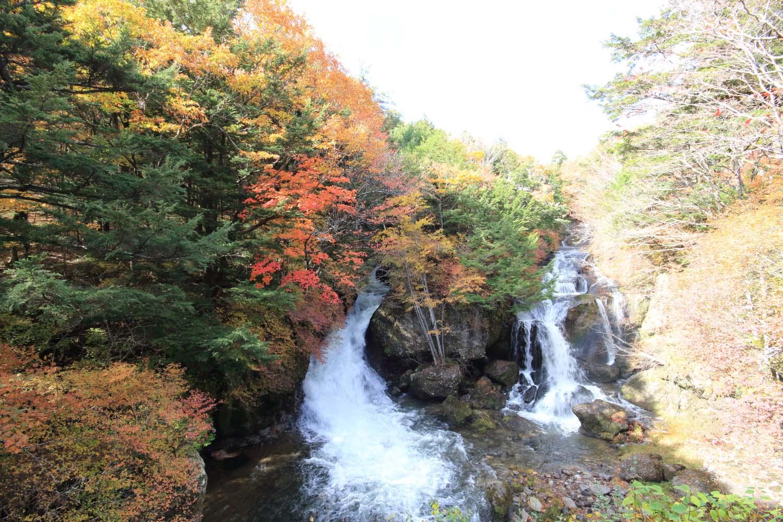 奥日光 竜頭の滝の紅葉page-visual 奥日光 竜頭の滝の紅葉ビジュアル